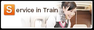 Service in train