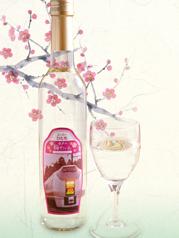超級市場hitachi水戶的梅樹wain